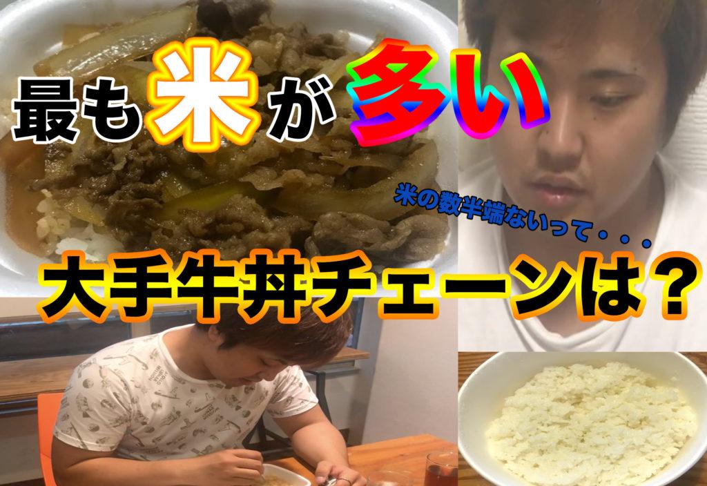 【頂上決戦】牛丼並盛りの米粒が1番多い大手牛丼チェーンはどこだ?